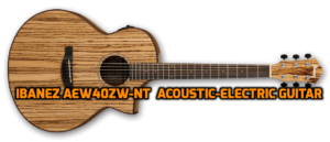 Ibanez Exotic Wood AEW40ZW-NT