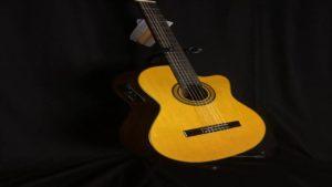 Oscar Schmidt OC11CE Guitar