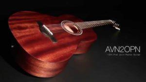 Ibanez AVN5 Mahogany Parlor Guitar